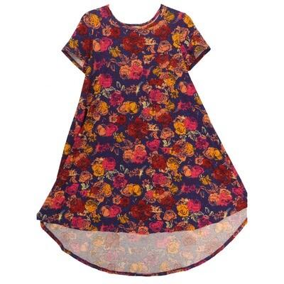LuLaRoe CARLY XX-Small XXS Purple Pink Floral Swing Dress fits Women 00-0