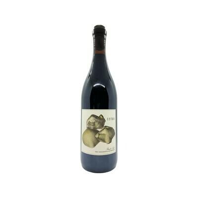 2017 Antica Terra 'Ceras' Pinot Noir Oregon