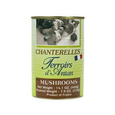 Terroirs d'Antan Chanterelles in Water France 14.1oz