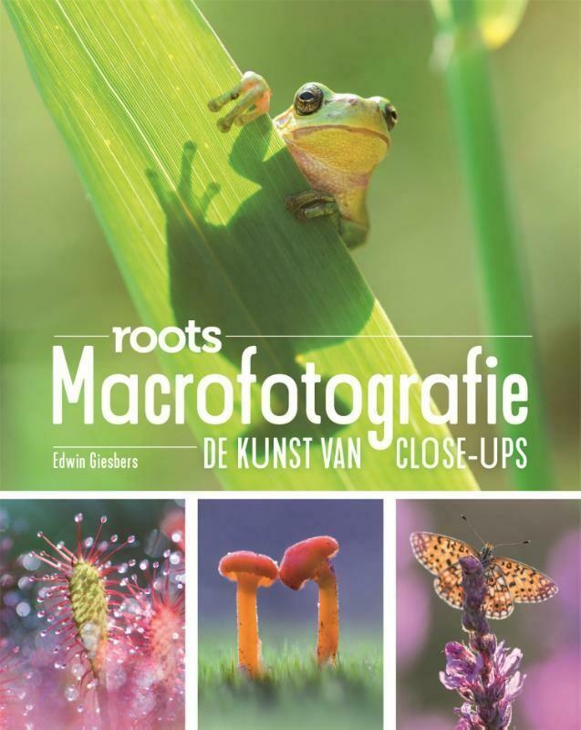 Macrofotografie - De kunst van close-ups - Roots