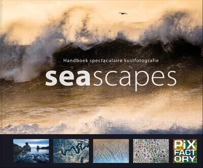 Seascapes - Handboek spectaculaire kustfotografie