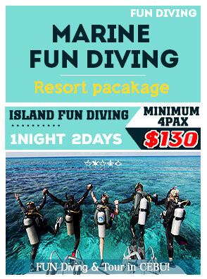 FUN DIVING PACKAGE