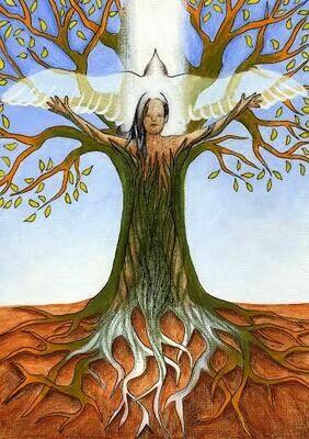 HUMAIN - Bilan complet holistique