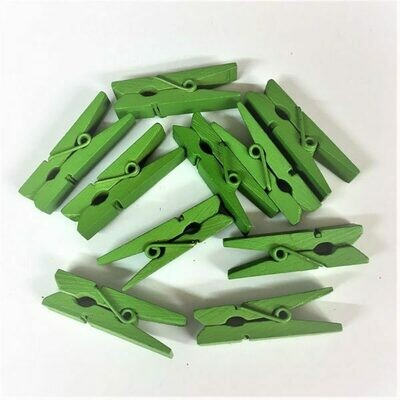 Wooden Pegs 1