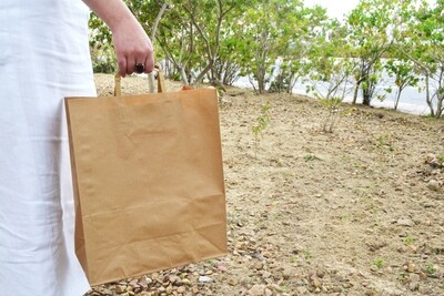Paper Bags Kraft Shopper Handle 320x155x392mm (Qty 25))