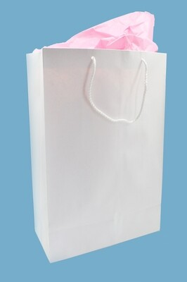 Paper BB Bag Rope Handle Large White 277x135x415mm (ea)
