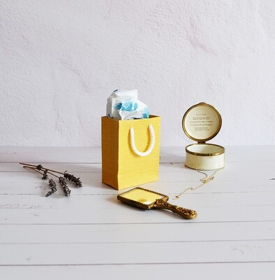 Tiny Rope Handle Paper Bag - Cream can (each)
