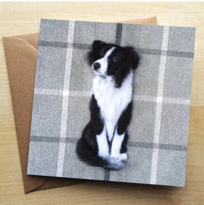 ❤️ Border Collie Greeting Card In Stock For Next Working Day Delivery
