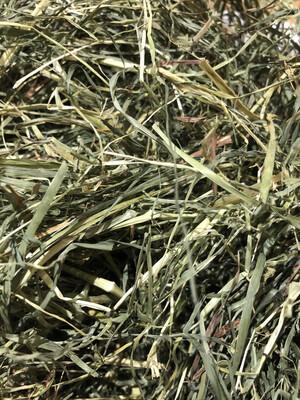 🟢 VP Orchard Grass 1kg