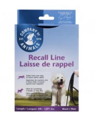Training Long Line Recall Lead 10m