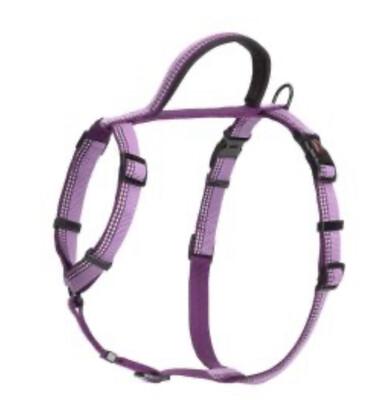 Halti Harness Walk Purple Large
