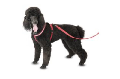 Comfy Harness Red Extra Small