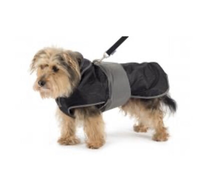 Ancol Muddy Paws 2 In 1 Harness Waterproof Dog Coat Small 30cm