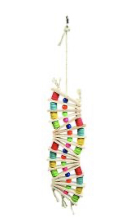 Parrot Wavy Rainbow Ladder Puzzle Toy Large