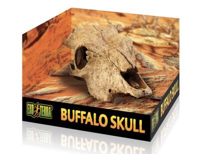Reptile Exo Terra Buffalo Skull Large Vivarium Decor
