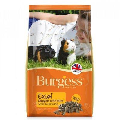 Burgess Excel Guinea Pig 2kg With Mint RRP £5.99
