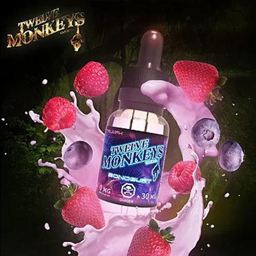 TWELVE MONKEYS - Bonogurt Strawberry Blueberry تويلف مونكيز فراولة وبلوبيري