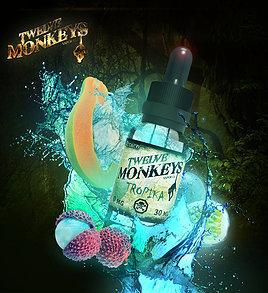 TWELVE MONKEYS - Tropika تويلف مونكيز فواكه استوائية