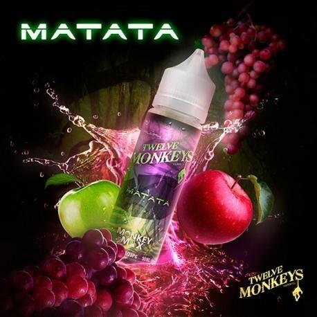 TWELVE MONKEYS - Matata Apples and Grapes تويلف مونكيز تفاح وعنب