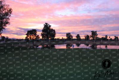 Blue Flag Sunset