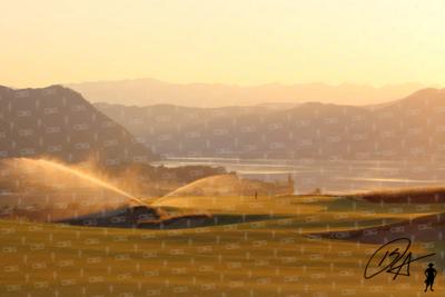 Sprinkler Sunset