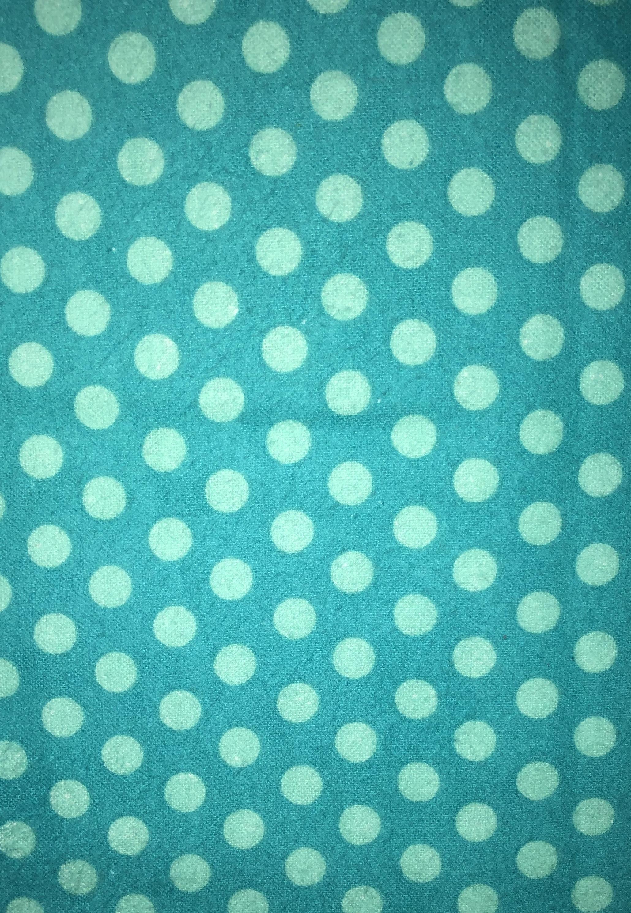 Aqua Polka Dot Flannel - 1/2m cut 55174