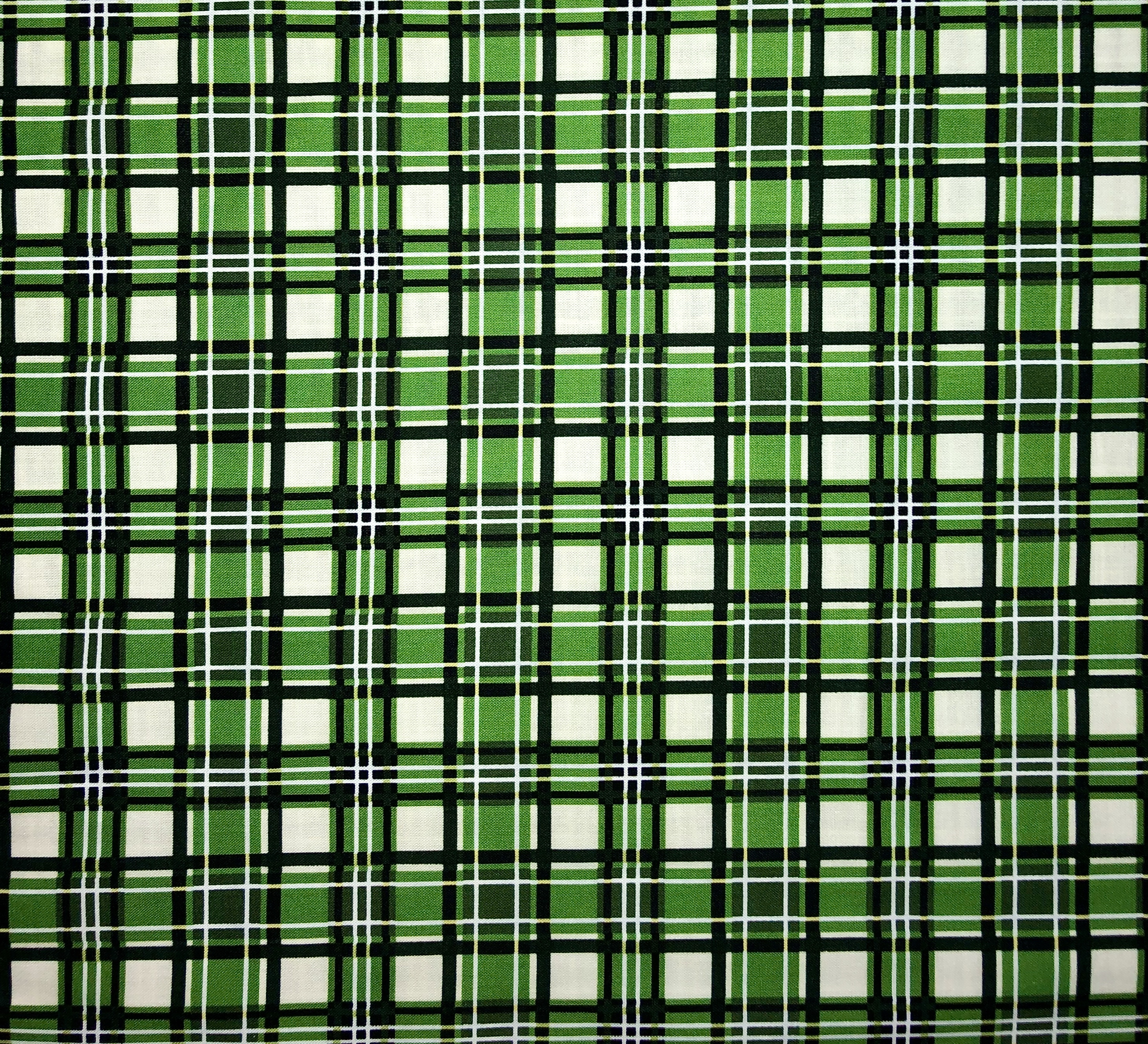 Green Plaid 55326