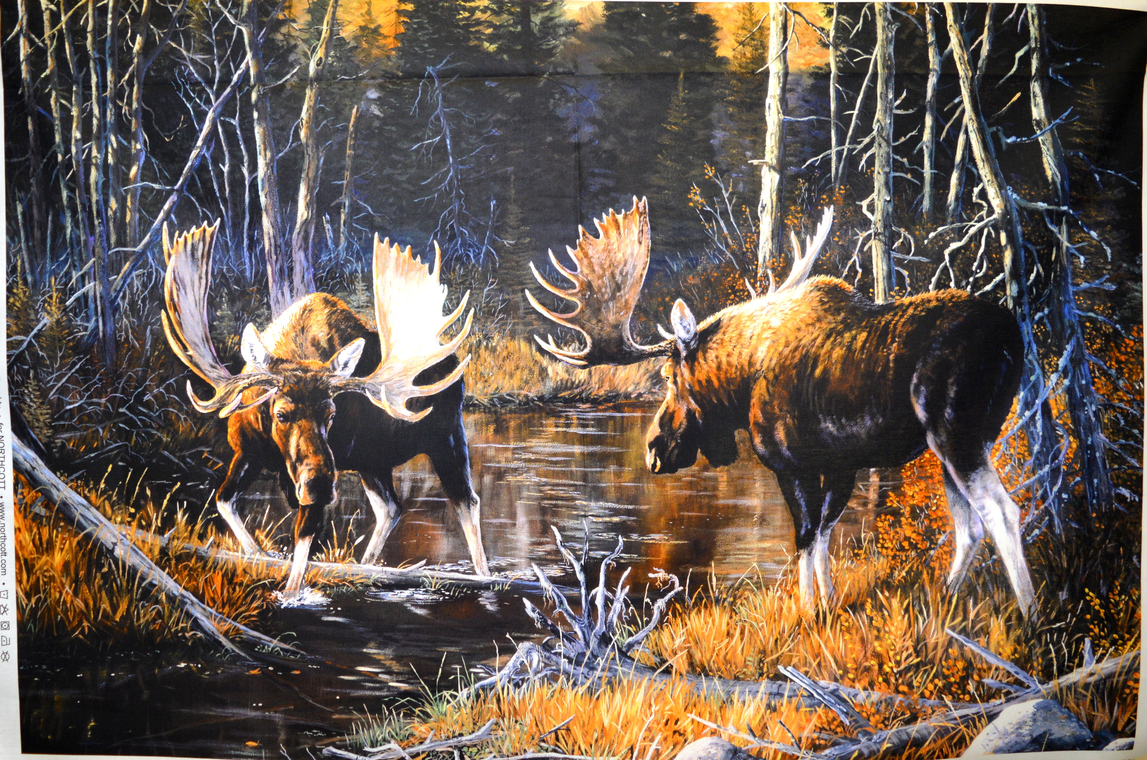 Majestic Moose Panel 55813
