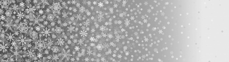 First Snowfall - Grey - 1/2m cut 55874