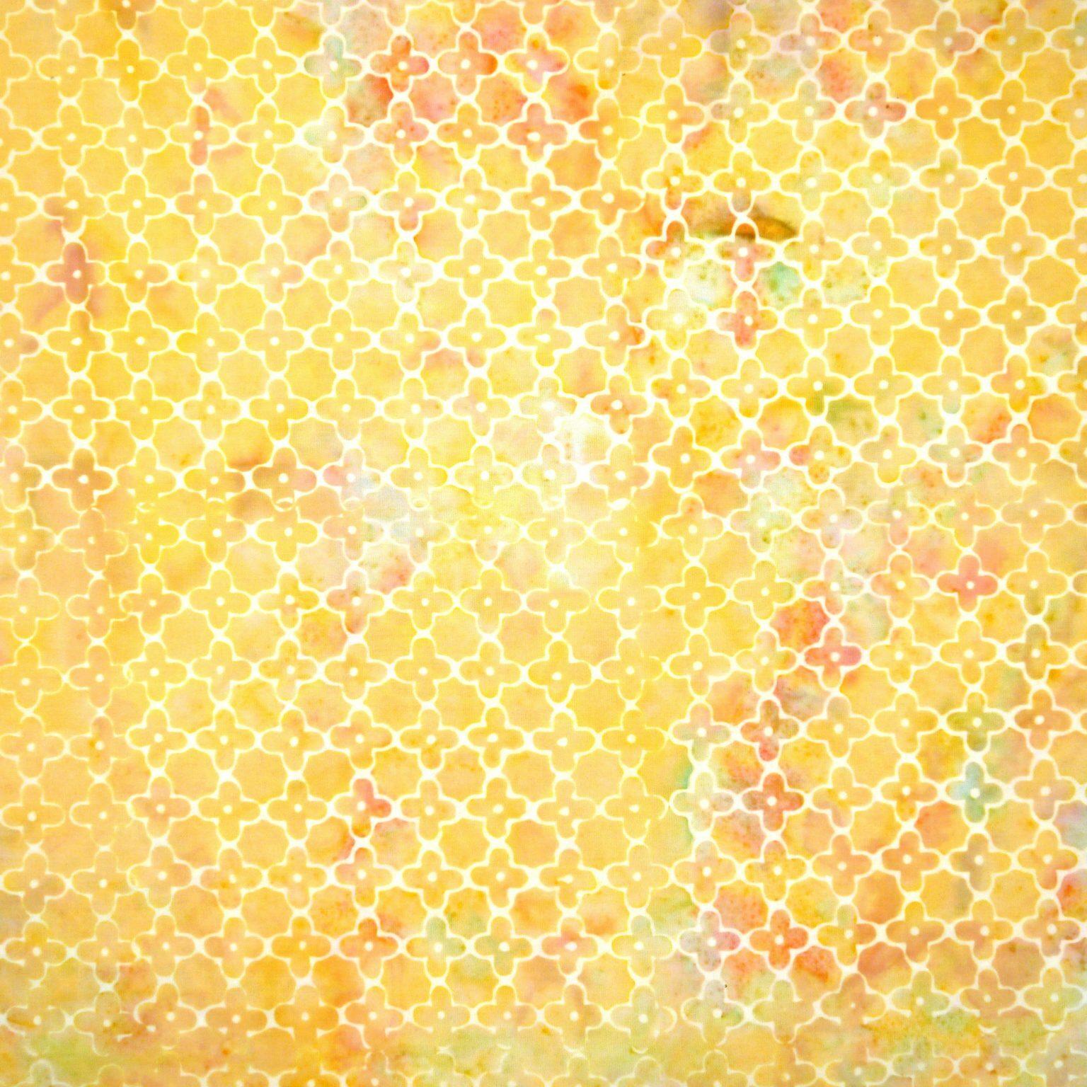 Salmonberry - Be Bliss - Batik - 1/2m cut 56237