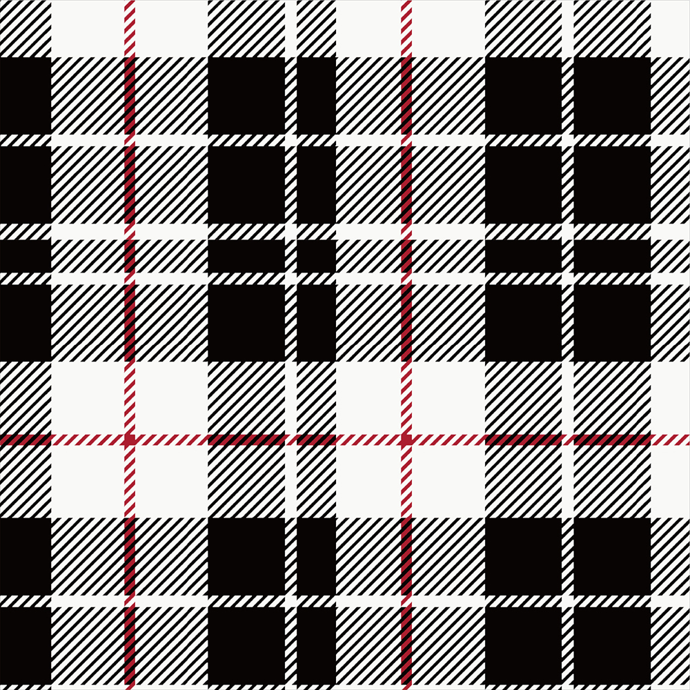 Yarn Dyed Flannel - Black and White Plaid - 1/2m cut 56721