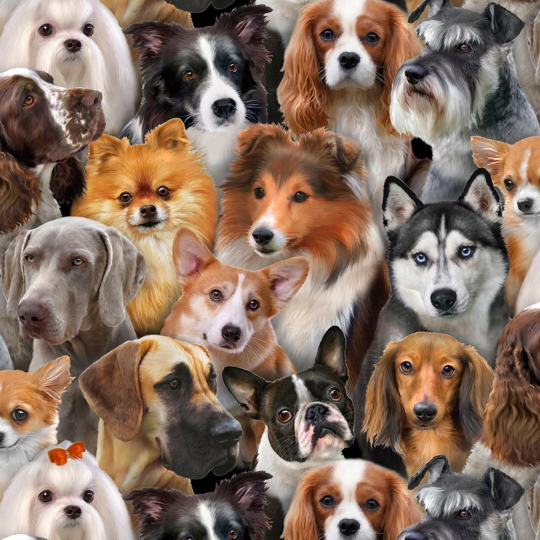 Dog Breeds #2 - 1/2m cut 57347