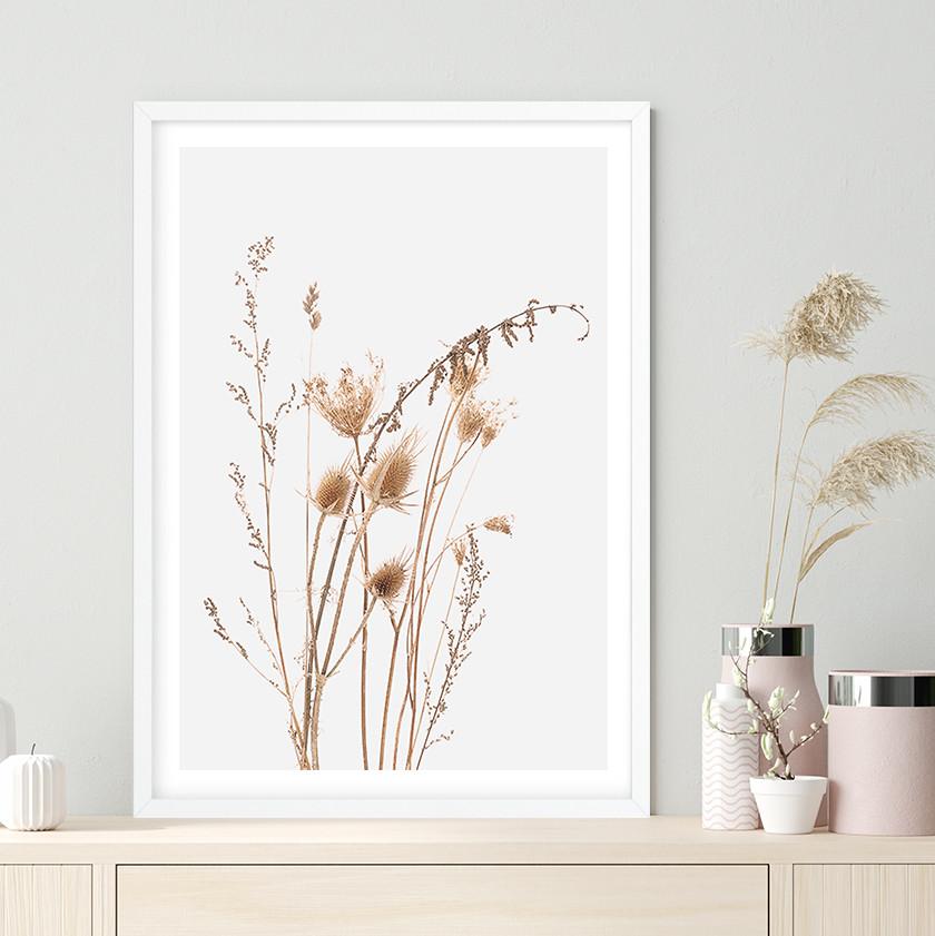 Dried Field Grasses