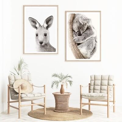 Aussie Joey & Sleeping Koala Set *SAVE*