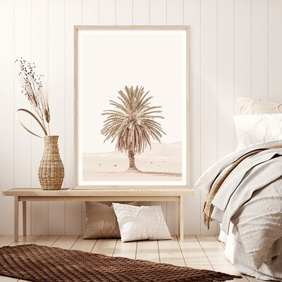 Palm Mirage