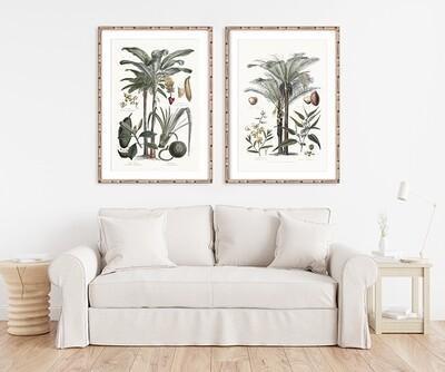 Bamboo Framed Tropicano I & II Set