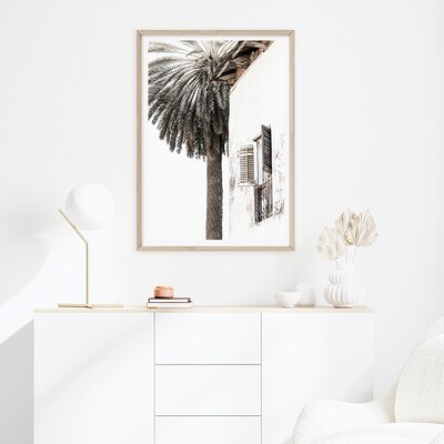 Palm Shutters (portrait or square)