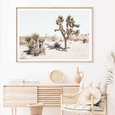 California Desert (landscape)