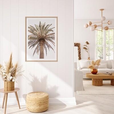 Paradiso Palm (portrait or square)