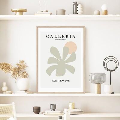 Palm Galleria