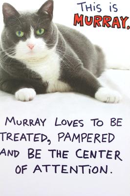 Be Murray