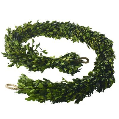 Boxwood Garland - Long