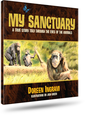 My Sanctuary - Hard Cover
