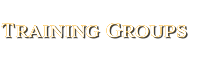 Training Group Fee