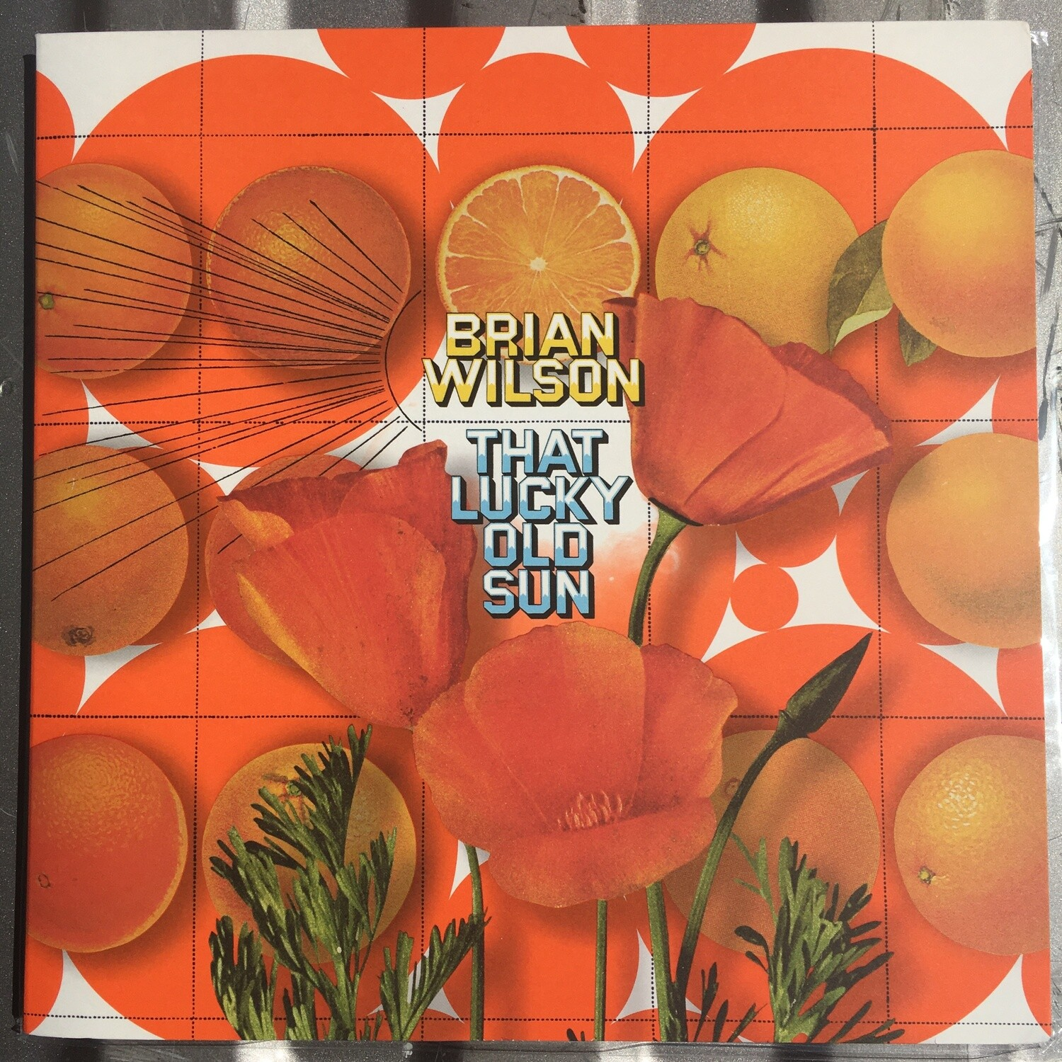 Brian Wilson (The Beach Boys) ~ That Lucky Old Sun ~ (USED) Vinyl LP ~ Excellent Shape