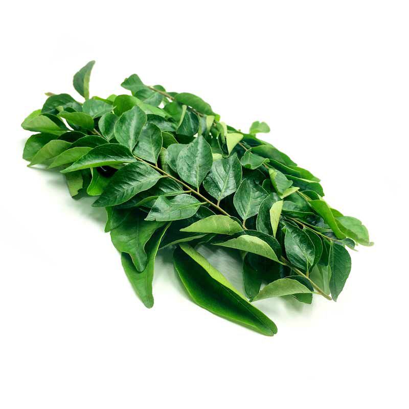 Curry Leaves 1 Bunch