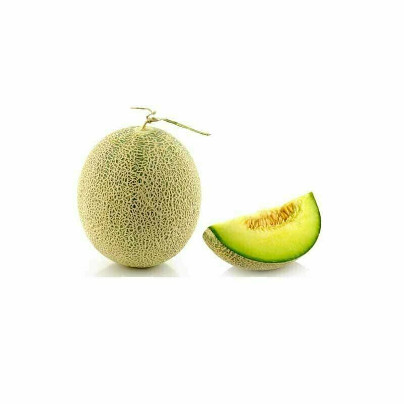 Rock Melon 10Kg Carton Box