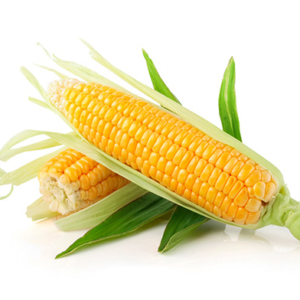 Sweet Corn 1 Unit