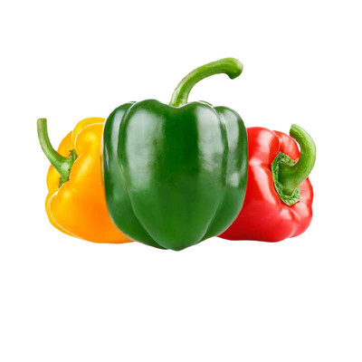 Bell Pepper MVR 70/Kg