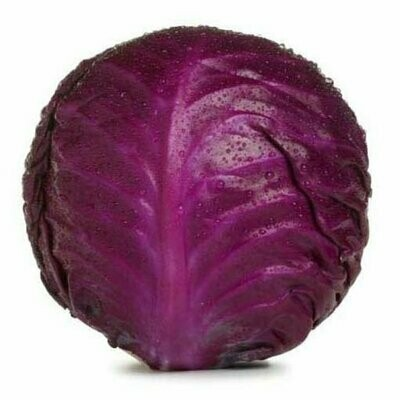 Red Cabbage MVR 55/Kg